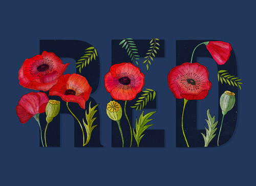 CalliLetters: Handlettering und Illustration / RED und Mohnblumen / digitale Koloration